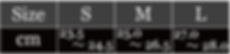 SPRINT SIZE.png