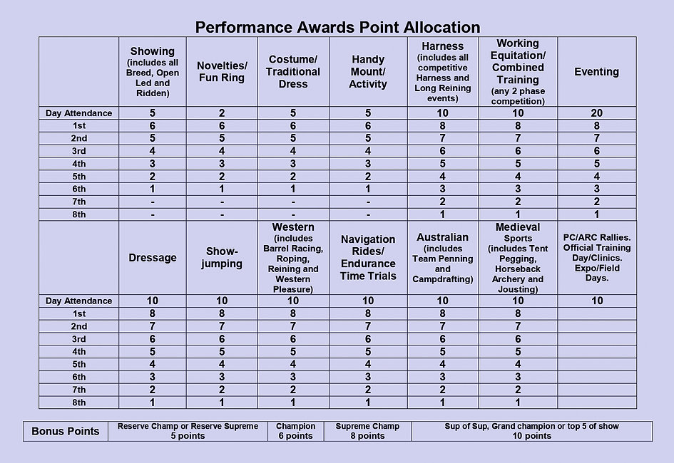 Performance Awards Point Allocation-purp