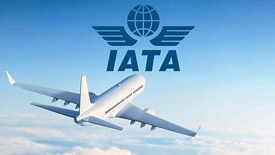 101219_IATA-hinge-accounts.jpg