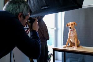 Making Of das sessões fotográficas