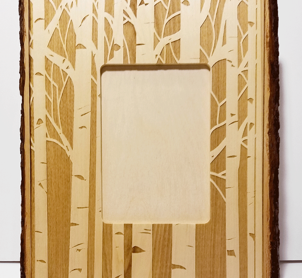 White Birch Grove Frame