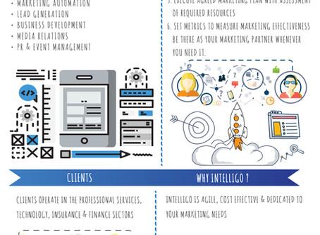 Infographic: Intelligo Consulting