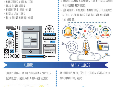 Infographic: Intelligo Consulting