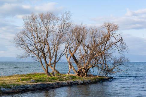 サニーフォト sunnyphoto 自然派移住フォトグラファー 滋賀県 高島市 カメラマン