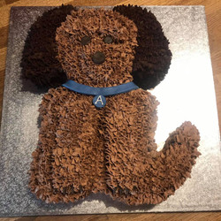 Teddy / Dog Birthday Cake