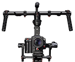 DJI1400.zoom_edited.png