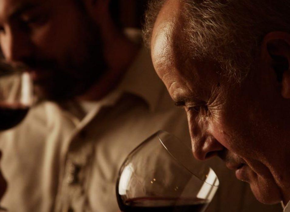 degustazione-di-vino-1240x698.jpg