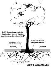 TREE WELL1.jpg