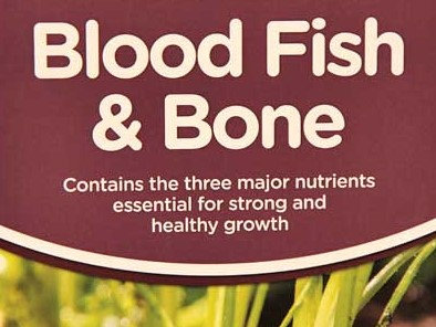 BLOOD FISH BONE - 1kg TUB