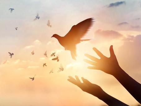 La paz un bien precioso, por una Colombia justa y solidaria – enero 2020