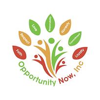 opp now logo 2 (2).png