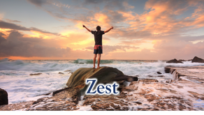 24 Character Strengths: Zest