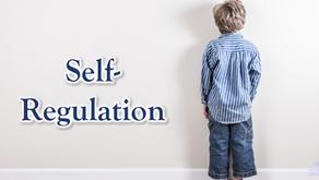 24 Character Strengths: Self-Regulation