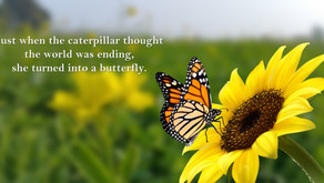 Thought for Wednesday, August 4, 2021