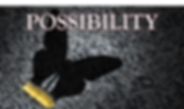 Possibility.png