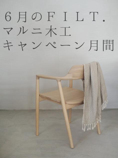 マルニ木工キャンペーン