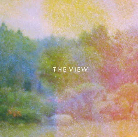 THE VIEW参戦