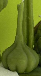 "Garlic 6"" tall"