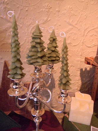 Evergreens candles