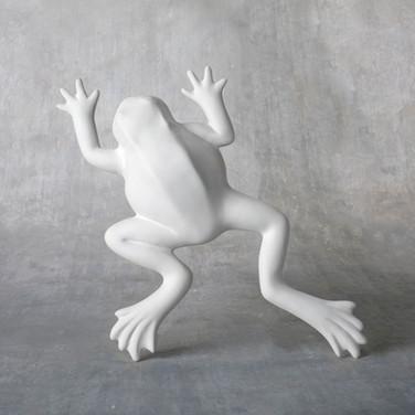 0065737_wall-frog.jpeg