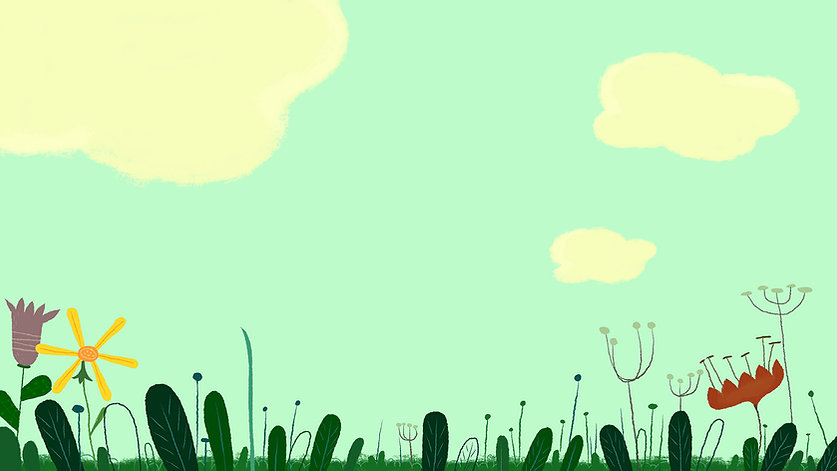 fe_flapacha_fleurs2.jpg