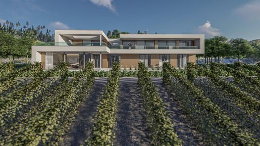 Villa + Weinberg