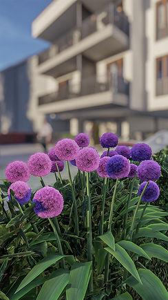 Trier_Euchariusstr_09.jpg