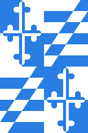 CantonCleaning-flags_Page_1.png
