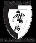 MSV71-logo.png