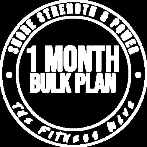 1 Month Bulk Plan