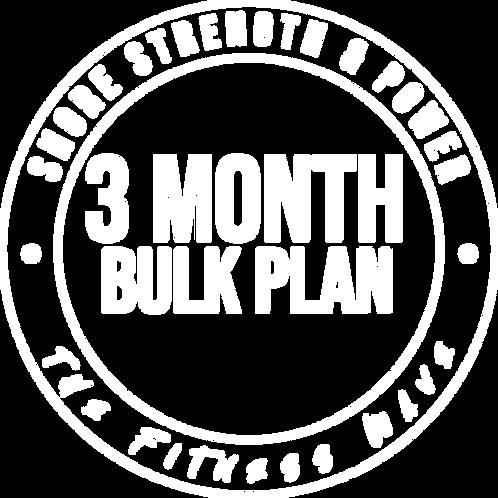 3 Month Bulk Plan