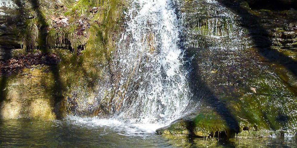 Tea Kettle & Reynolds Falls Hike