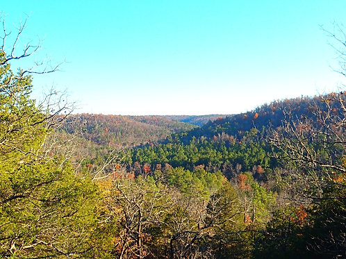 Guided Day Hikes
