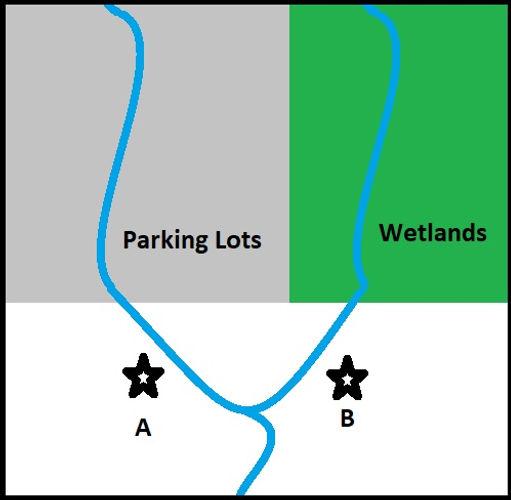 Parking Lot vs wetlands.jpg