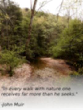 Nature Quote.jpg