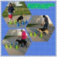 Heeling Practice while Training