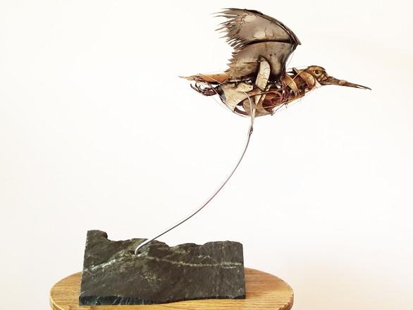 Woodcock 2