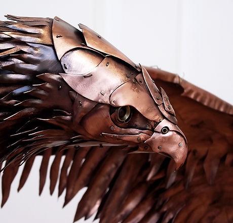 ean-dawbarn-wings-Red-Kite-2-4.jpg