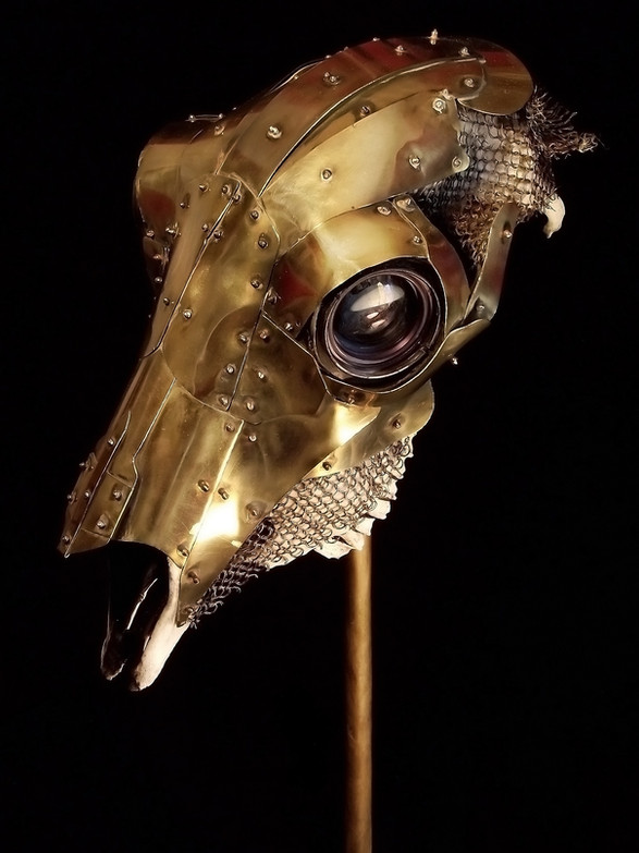 Brass & Chainmail Sheep Skull