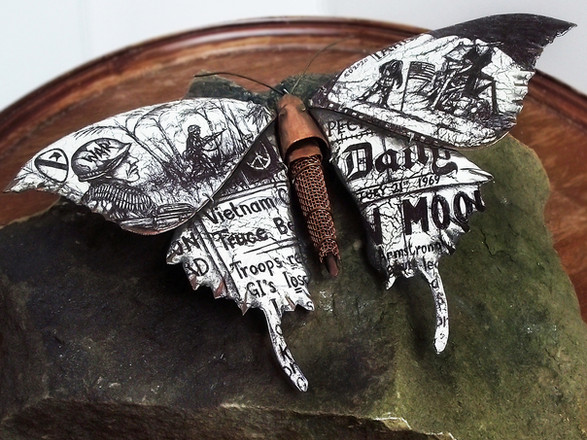 1969 Evolution Butterfly