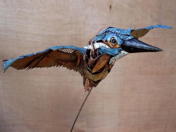 Kingfisher 12