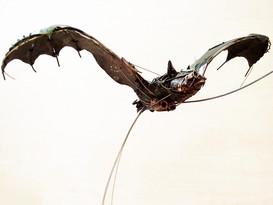 Bat 4