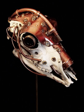 Lens Metal & Copper Sheep Skull 2