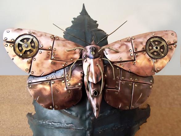 Machine Moth 3