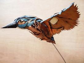 Kingfisher 14