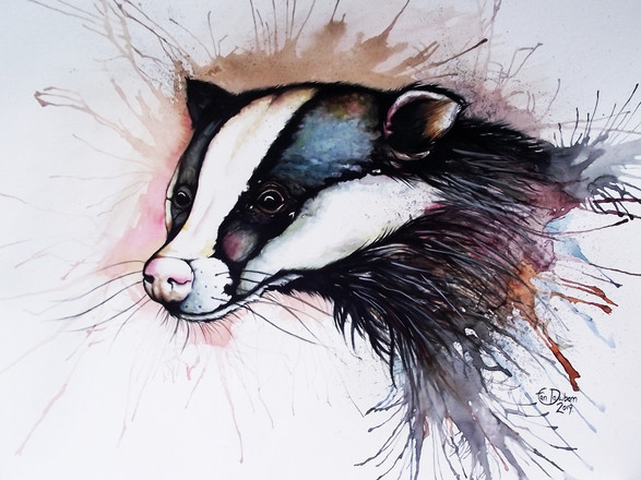 A3 Badger Watercolour