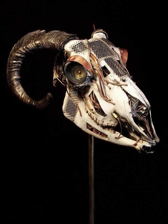 Chipped Metal Sheep Skull