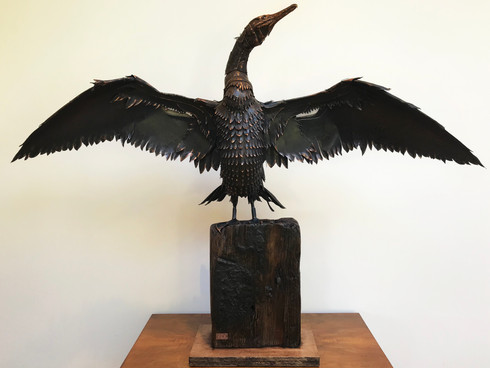 Cormorant 1