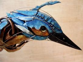 Kingfisher 13