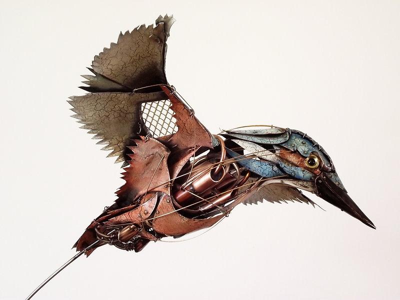 Kingfisher-2-3.jpg